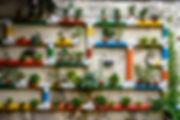 Urban-Farming-FI.jpg
