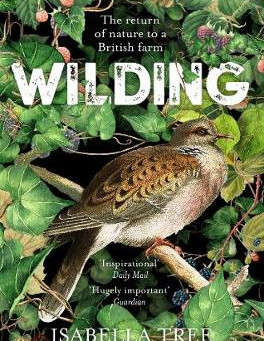 Our Four Favourite Books about Nature