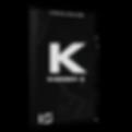 Kickboy 2 copy.png