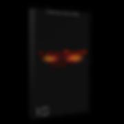 Sylix 2 Future Bounce Vol.1 copy.png