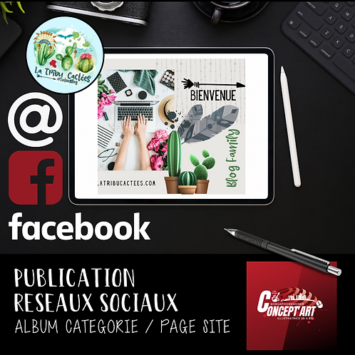 PUBLICATION RÉSEAUX SOCIAUX - PAR LOT