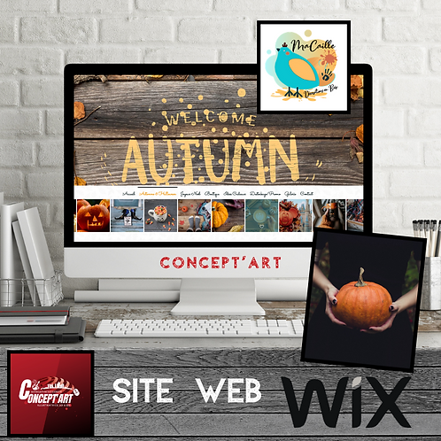 PAGE E-SHOP WIX EPHEMERE