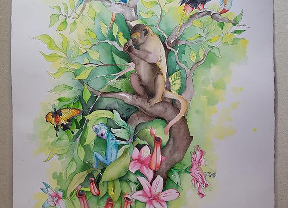 Exotic Nr. 1 - Dinnertime - Fine Art Print