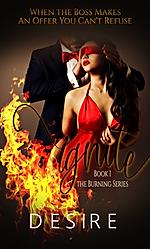 ignite3.png
