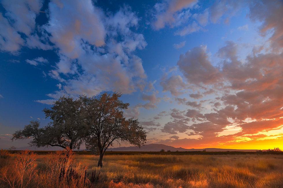 Hi Desert sunset 16B 2-24-19 web.jpg