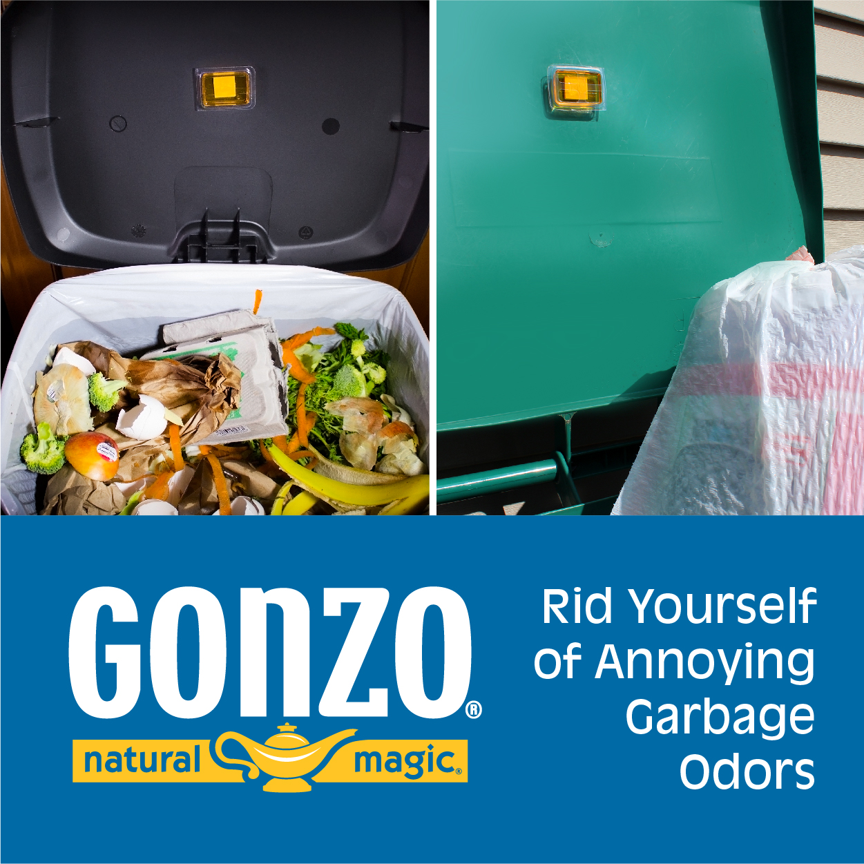Gonzo Natural Magic Web Ad