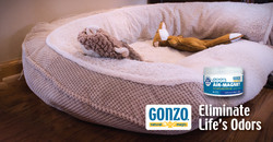 Gonzo Natural Magic Web Ad