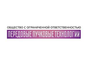 ППТ.png