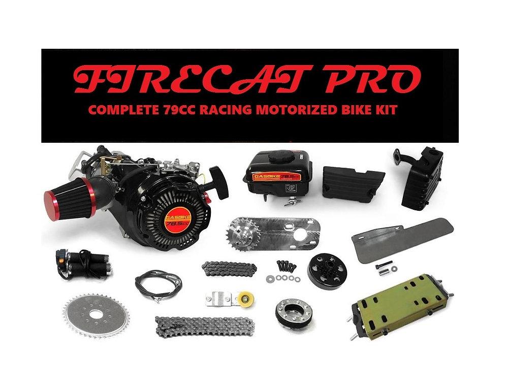 Firecat PRO 79cc Four Stroke Engine Kit | website