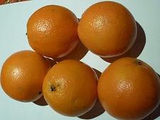 Oranges Noveline - Directissimo68