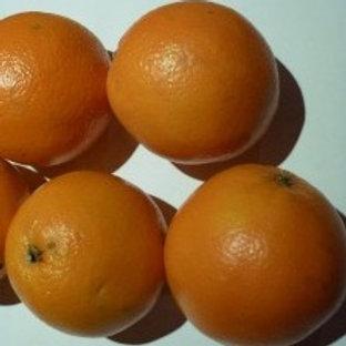 Oranges Naveline (caisse de 11 kg environ)