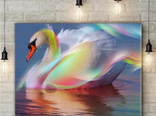 'Swan Rainbow' Heated Canvas