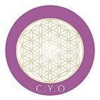 Logo.cursos.online.jpg