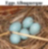 Eggs%20Albuquerque%20Frame_edited.jpg