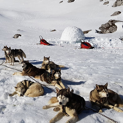 presta-hiver-raid2.jpg