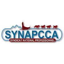 SYNAPCCA.jpg