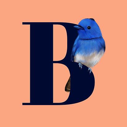 B_For_Black_Naped_monarch.jpg