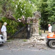 Churchyard tree - lucky escape!
