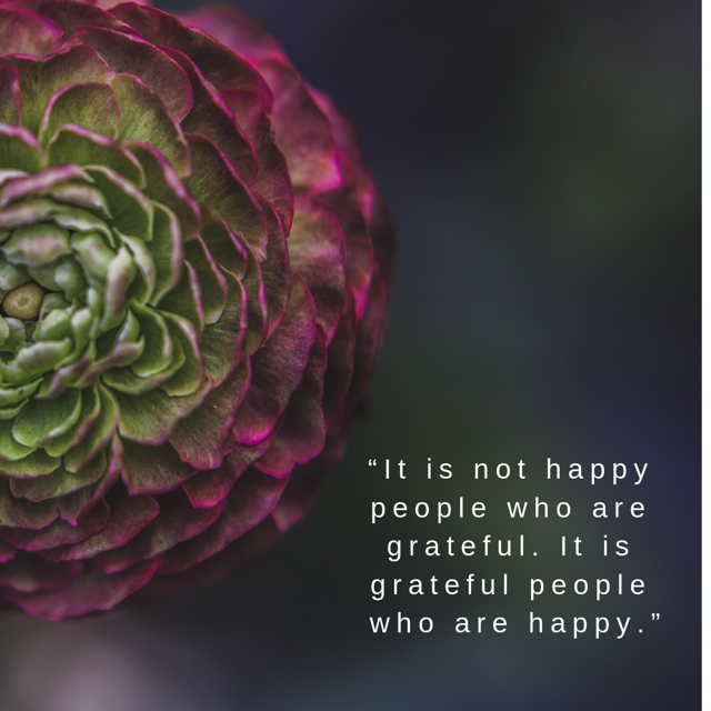 flower, gratitude quote, artichoke, inspiring quote, grateful quote on a flower