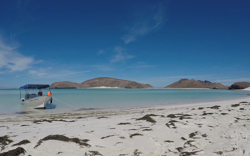 Balanra Beach mexico, mexico beach, beach, boat, blue water beach, white sand beach