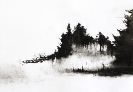 Portraits and other Fractured Landscapes 5v2