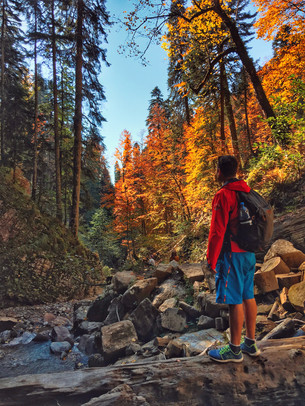 Золотая осень в горах.