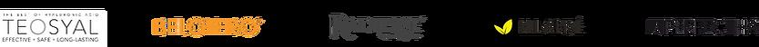 EH Logo Strip.png