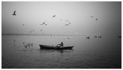 BIRDS AND BOATS on the Ganges 90X51
