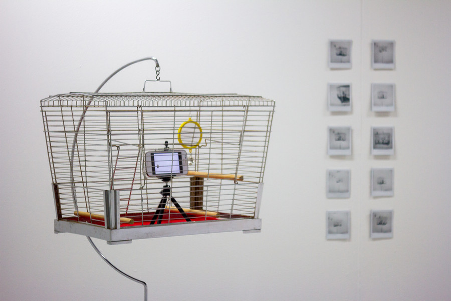 Mixed Media (Lino Print/Collage/Bird Cage/Repurposed Mobile Phone/Stop Frame Animation/Instax Prints)