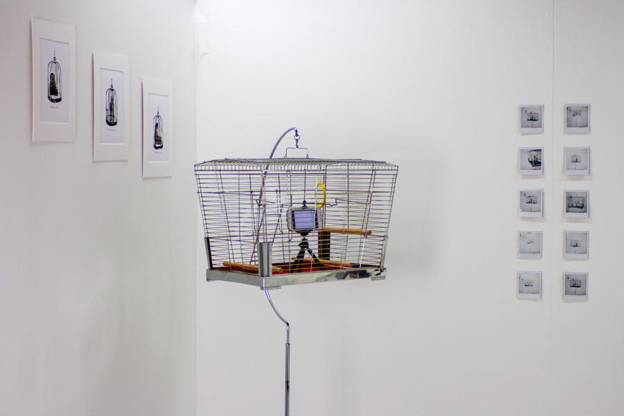 Isolation Chorus - Installation