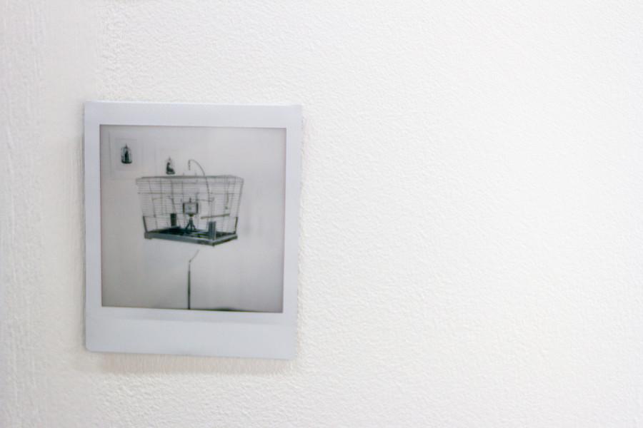 Isolation Chorus - Installation (detail)