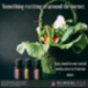 Clinical Oils - Social Media PRE LAUNCH