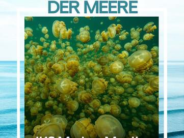 "Podcast ""Helden der Meere"" mit Markus"