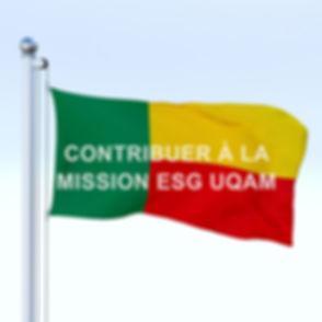 FLAG BENIN.jpg