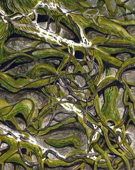 Rope Oak Detail
