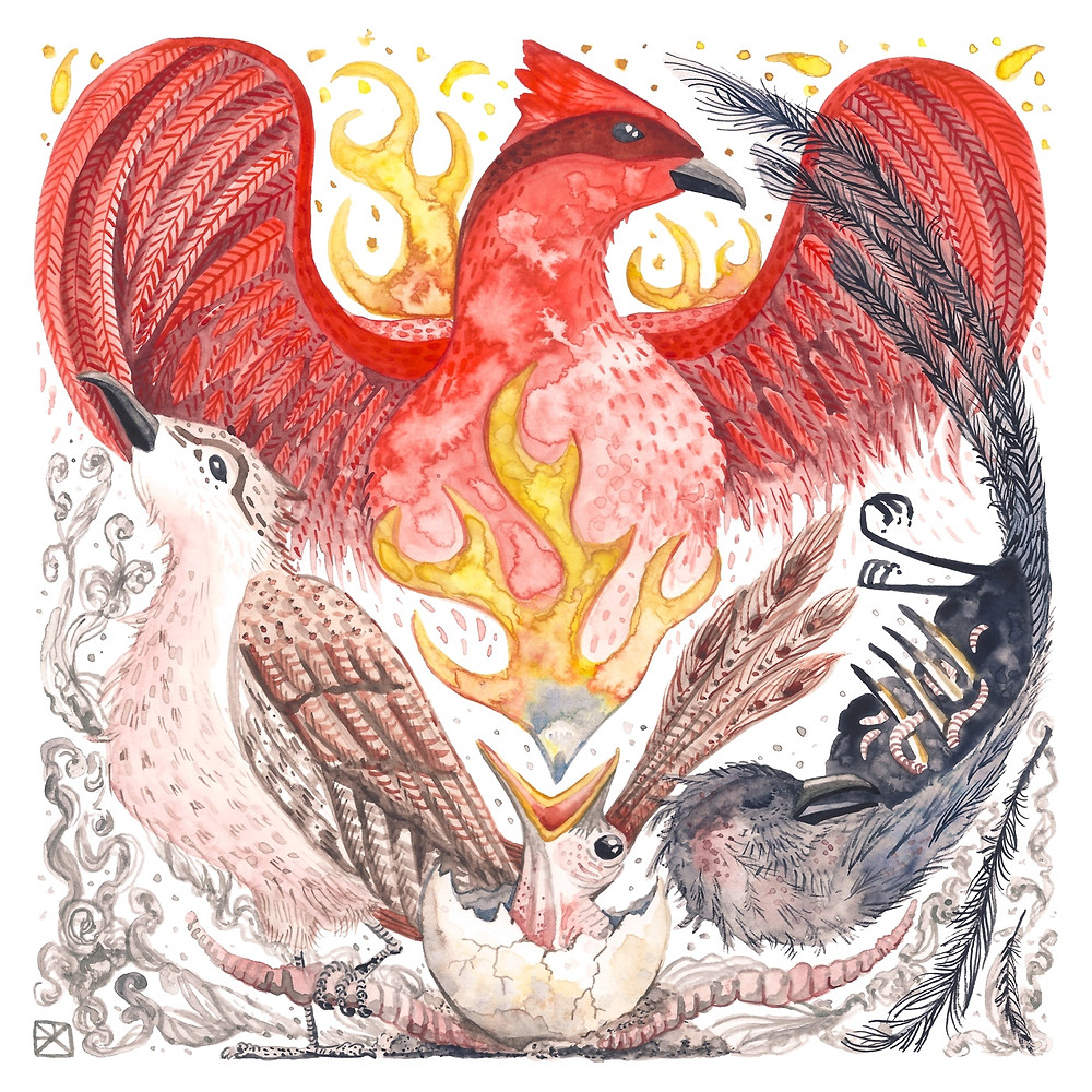 Watercolor Illustration: The Phoenix and The Worm. A phoenix in each stage of its life cycle--worm, hatchling, fledgeling, firebird, and ashen corpse, bordered in smoke and flame.
