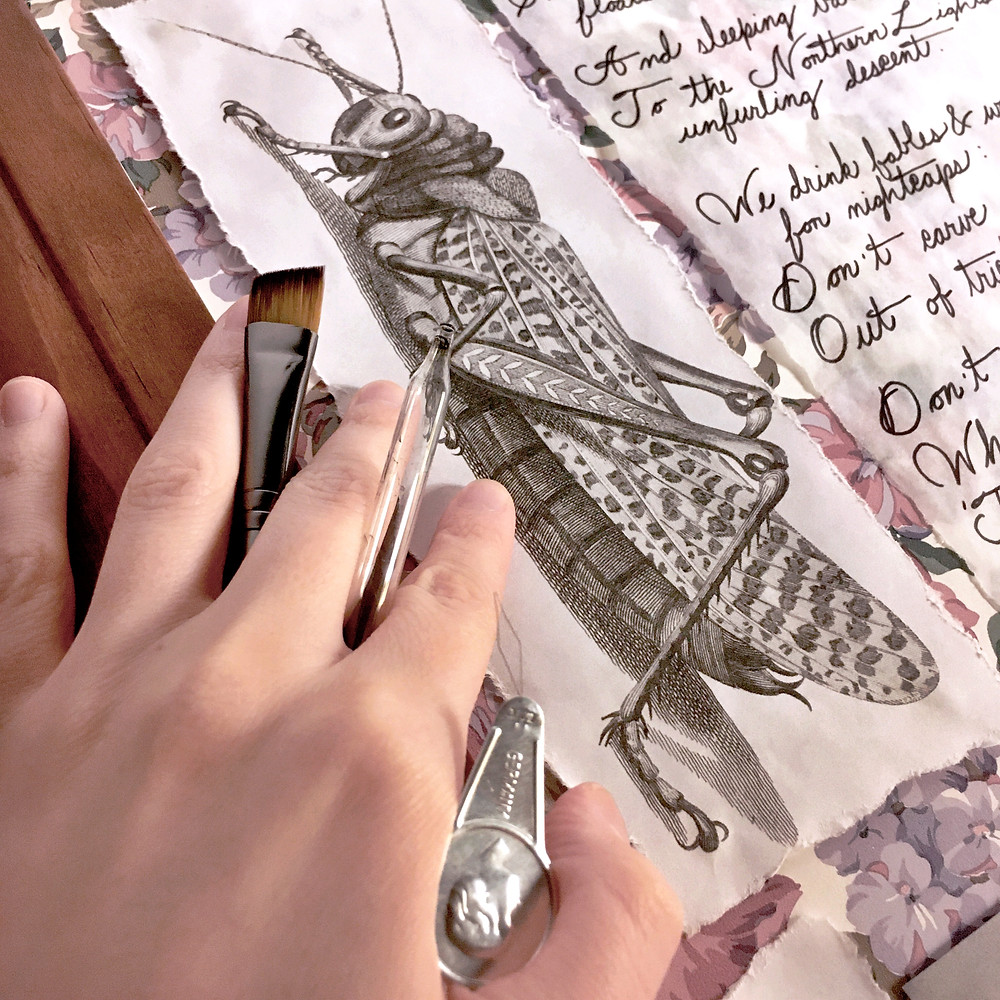 Photograph: a hand holds a paintbrush, eye-dropper, and needle-threader against a door frame. Tacked on the wall are an antique ink illustration of a grasshopper and poetry handwritten in script.
