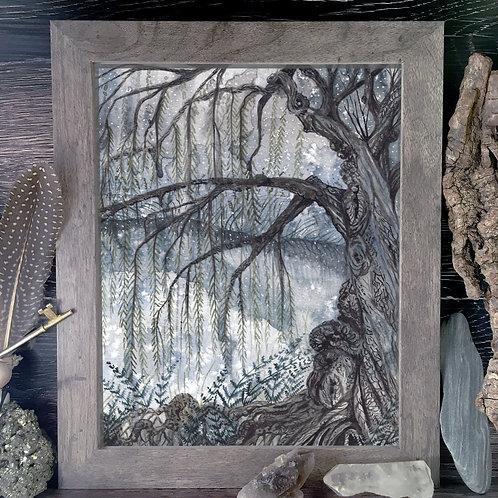 Willow Pond Fine Giclée Print