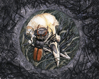 Salt Circle With Crow Skull And Stag Beetle