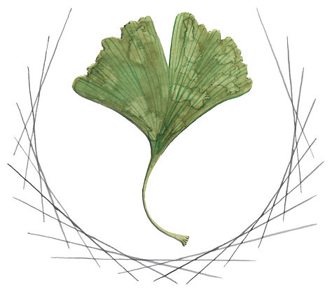 Watercolor Graphic: A ginko leaf bordered by a minimal, geometric wreath.
