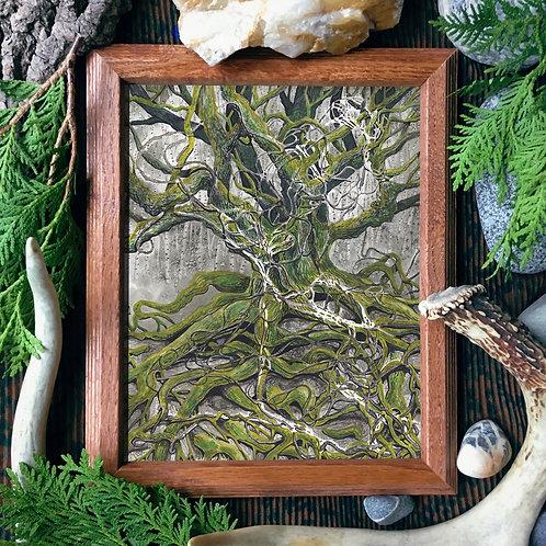 Rope Oak Fine Giclée Print