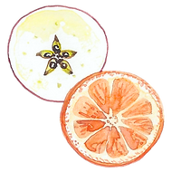 Watercolor Icon: apple and orange