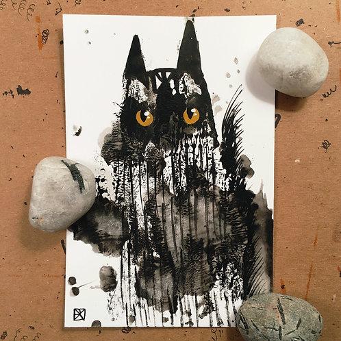 Arnold Critter-Blot Sketch