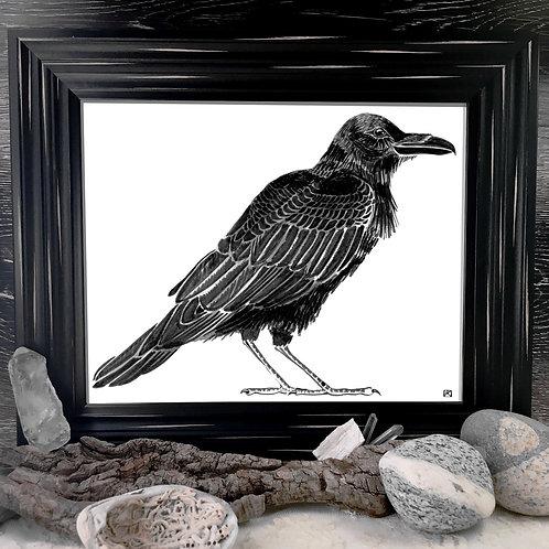 Raven Fine Giclée Print