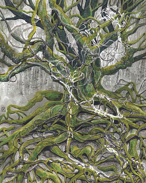 Rope Oak