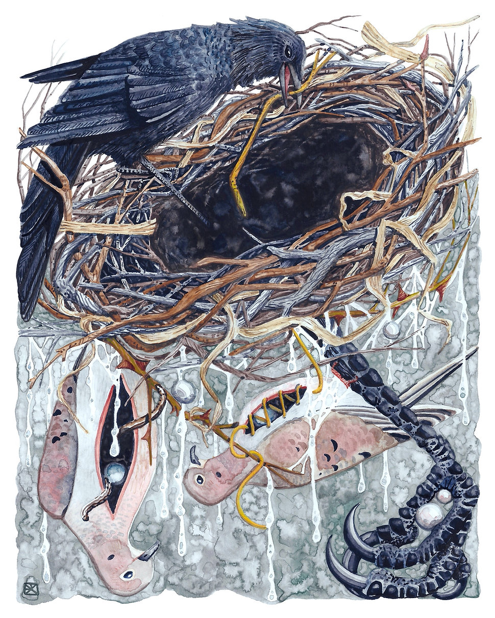 Watercolor illustration: a crow pulls a gold branch from the black center of a nest. Below, mourning doves with glow worms in their chests roost upside down on a giant corvid claw, with dripping worm trails and pearls. By artist Evvie Marin.