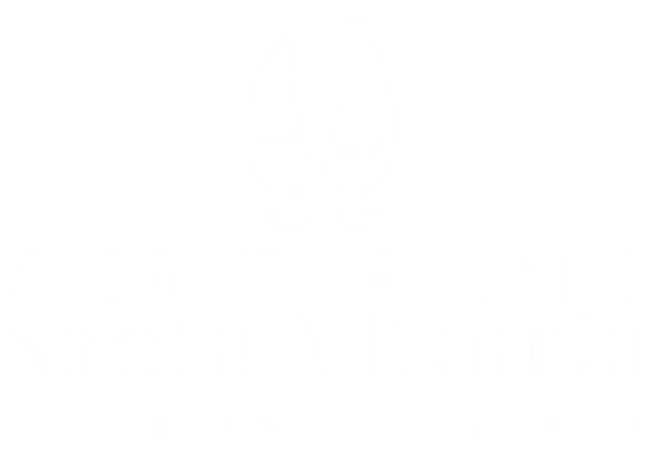 SV marchio negativo home.png