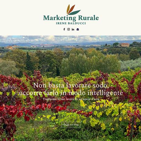 sito web per Irene Balducci