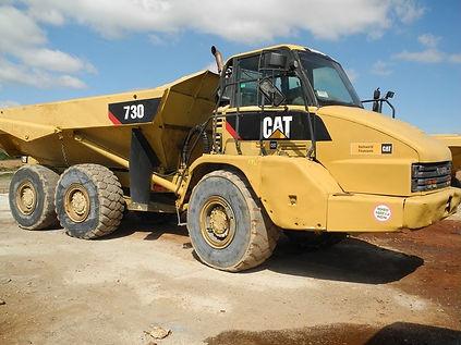 Cat730.jpg