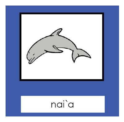 Parts of a Dolphin 3-Part Cards- Hawaiian